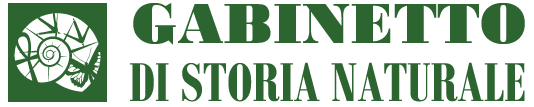Gabinetto di Storia Naturale